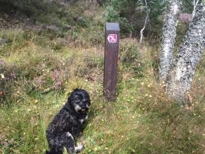 Parkin's Moss trail in deeside, Aberdeenshire